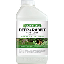 Deer & Rabbit Repellent Concentrate